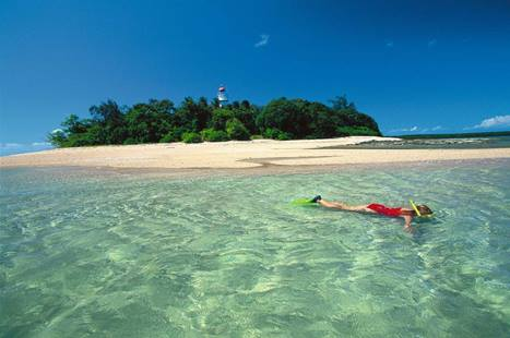 Snorkelling In Shallows, Low Isles